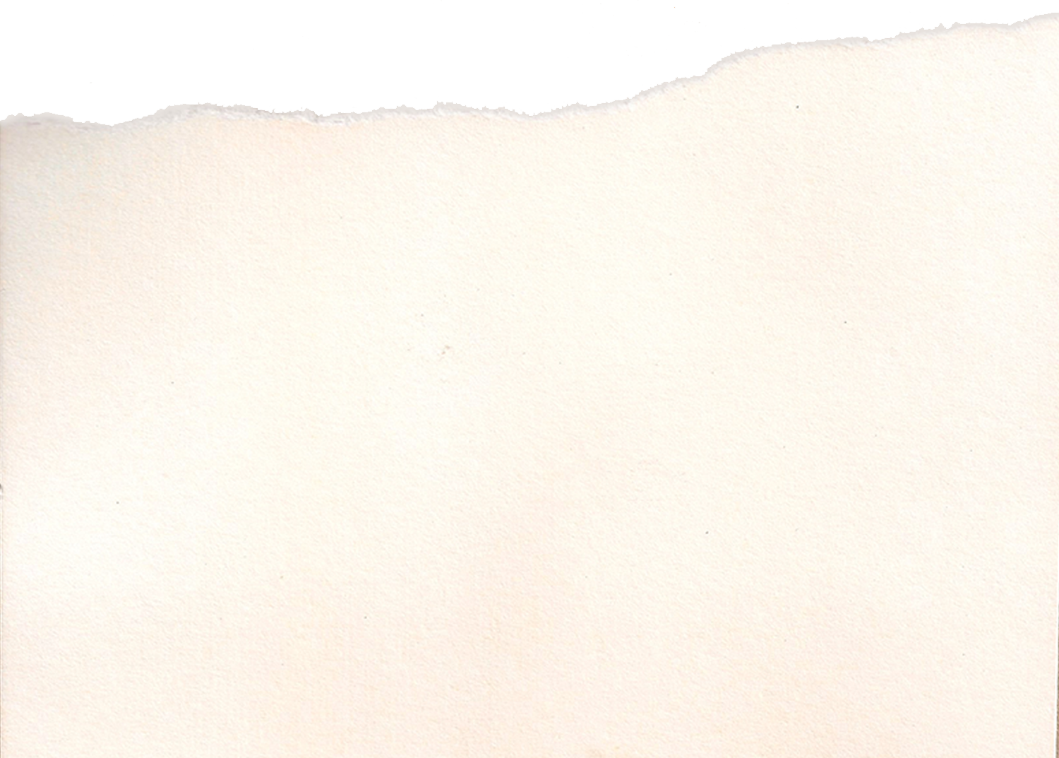 canva  white card stock paper with one ripped edge